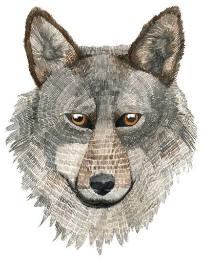 S1950D - Saylor, Jeannine - Wolf