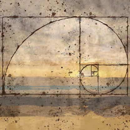 W1223D - Wiley, Marta - Fibonacci Shell