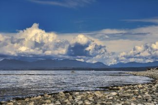 B4177D - Burdick, Chuck - View From The Beach