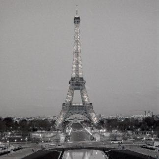 Tour Eiffel #7