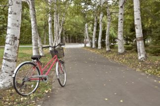 Japan Bicycle #18