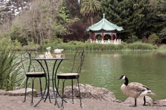 Dream Cafe Stow Lake #48