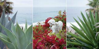 Laguna Coast #1