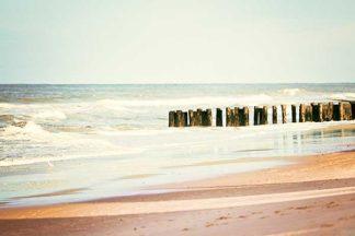 Shore Days