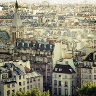 S1114D - Suchocki, Irene - Paris Calling