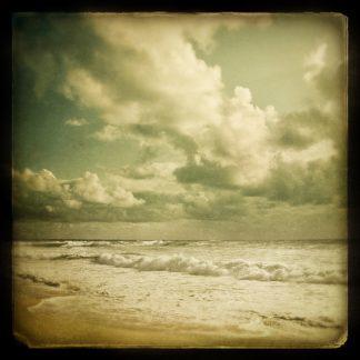 S1115D - Suchocki, Irene - The Waves