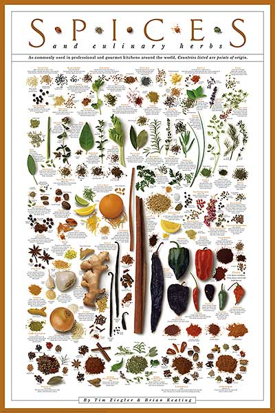 Spices and Culinary Herbs